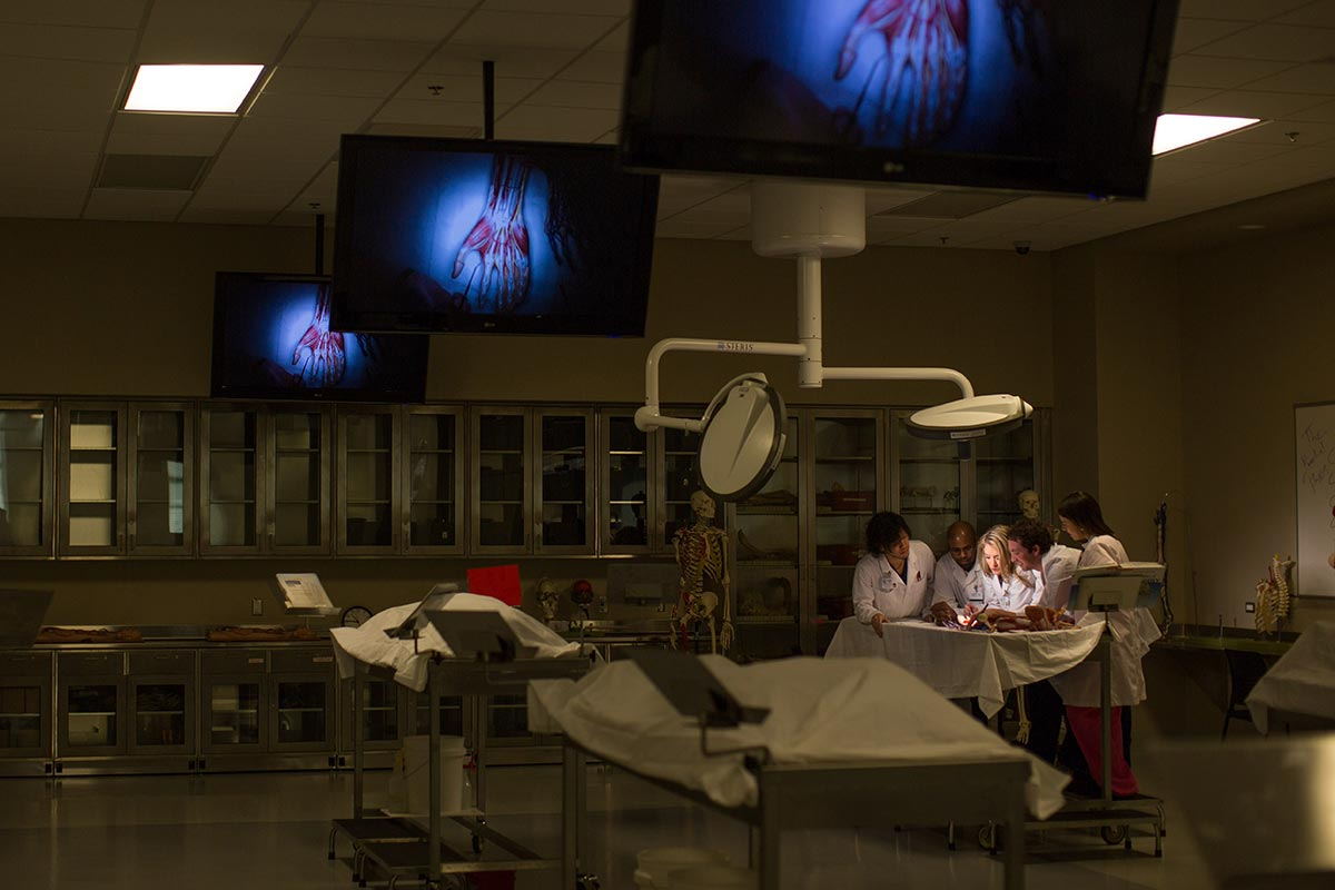The 20,000 square-foot Medical Sciences building opened in 2013 and features a wet cadaver lab that is available to undergraduate students via the Gross Anatomy course.